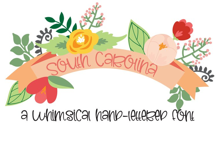 PN South Carolina example image 1