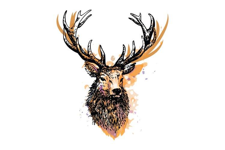 Deer splash of watercolor logo vector example image 1