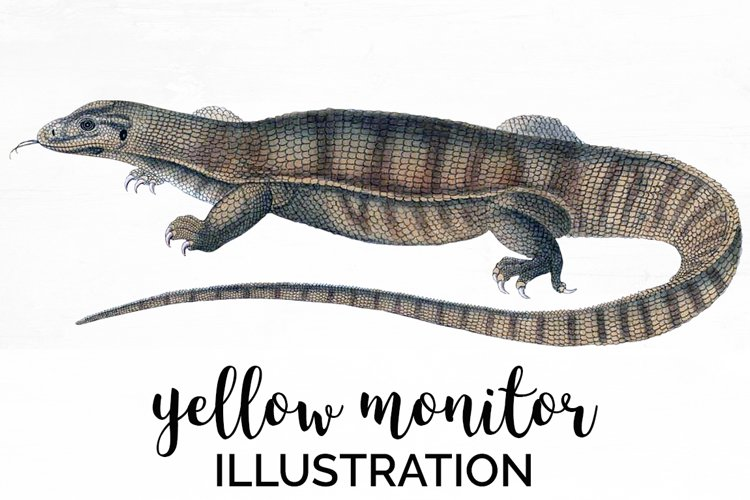 Lizard Clipart Yellow Monitor example image 1