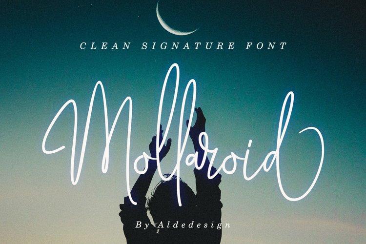 Mollaroid   Signature Font example image 1