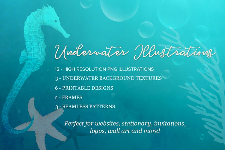 Underwater Illustrations