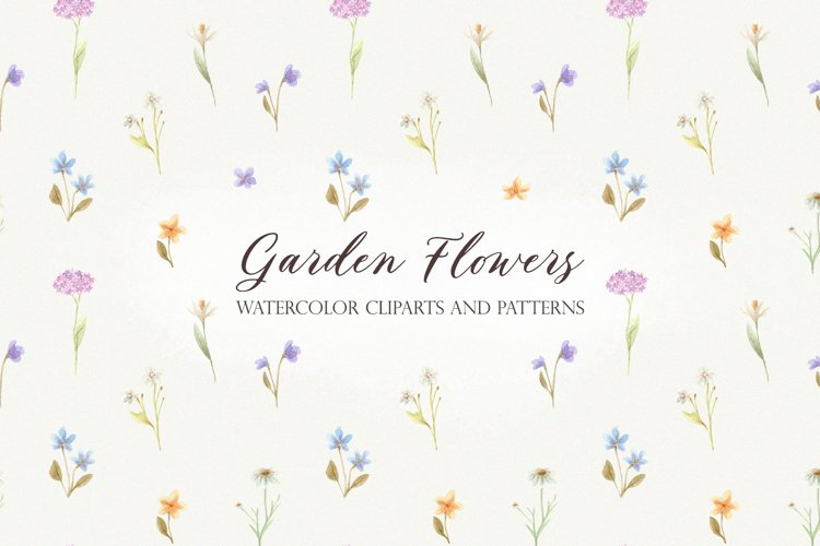 Garden Flowers. Watercolor Collection Patterns and Cliparts