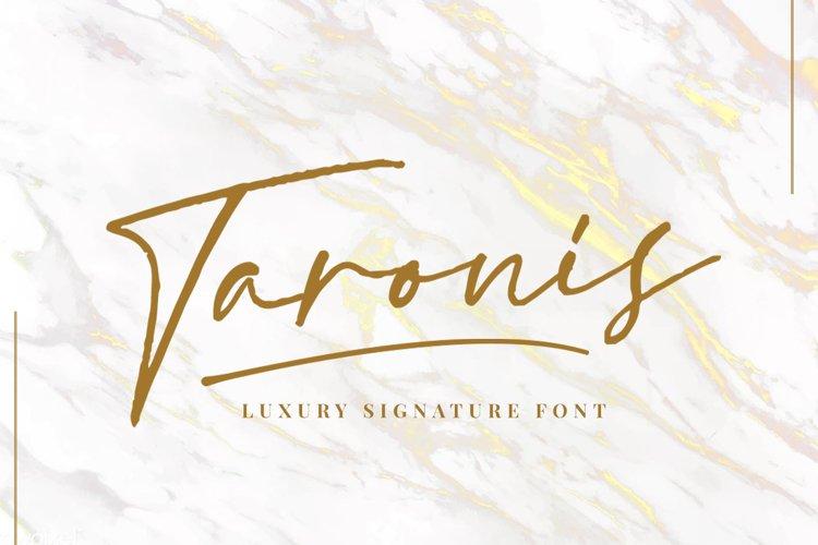 Taronis Signature Font example image 1
