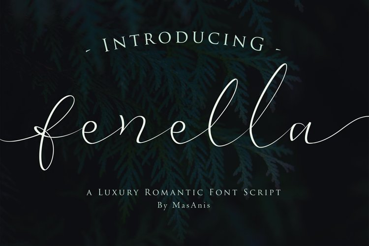 Web Font Fenella - Luxury Romantic Font example image 1