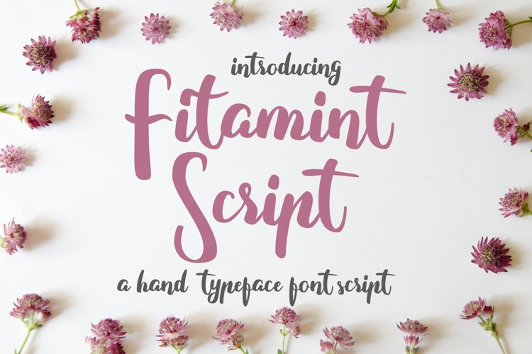 Fitamint Script - Font example image 1