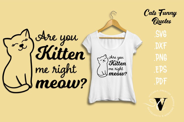 Are you kitten me right meow SVG Cats quotes