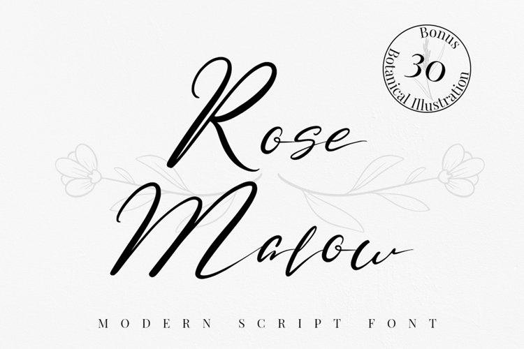 Rose Malow example image 1