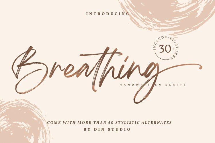 Breathing - Brush Signature Font example image 1