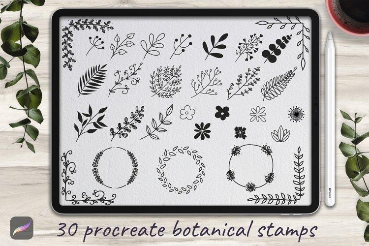 Set of 30 Botanical Stamp Brushes for Procreate example image 1