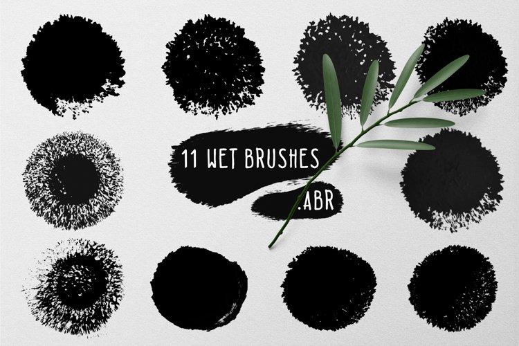 11 wet brushes set .ABR example image 1