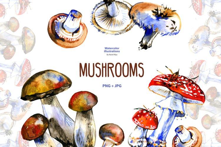 Watercolor mushrooms example image 1