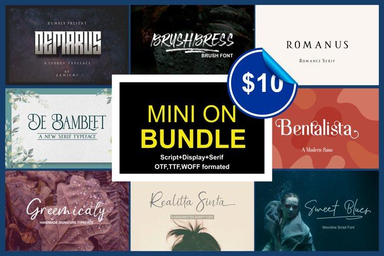 Mini on Bundle example image 1