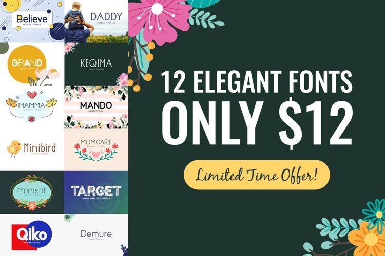 12 Elegant Fonts Only $12