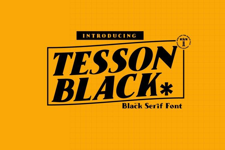 Tesson Black Serif example image 1