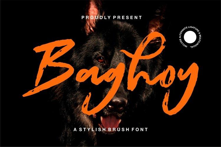 Baghoy - A Stylish Brush Font example image 1