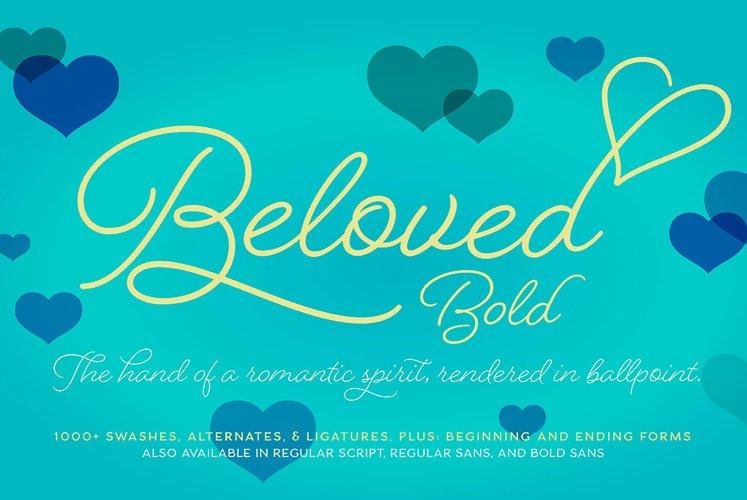 Beloved Script Bold example image 1