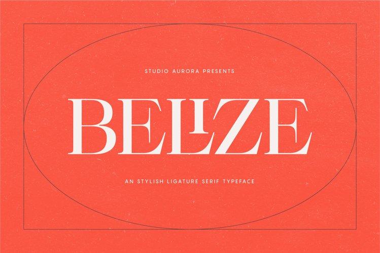 Belize - Stylish Ligature Serif Font example image 1