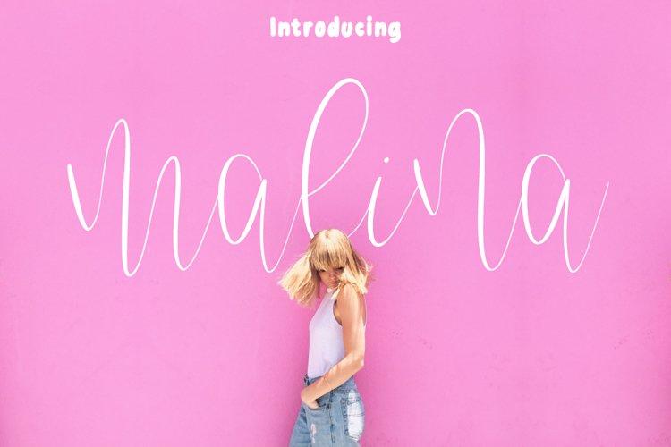 Malina Font Duo example image 1