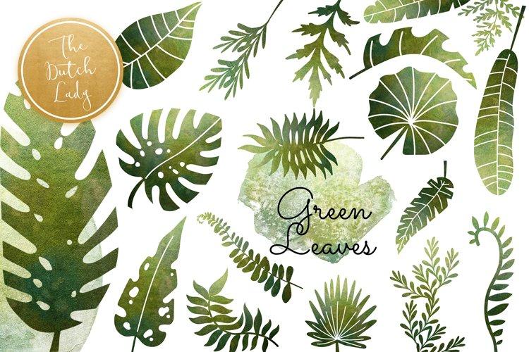Green Shiny Leaf Clipart Set