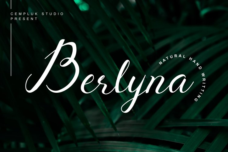 Berlyna - Modern Script Font example image 1