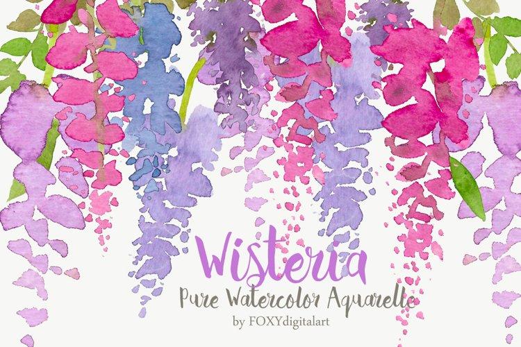 Watercolor Flowers Wisteria Aquarelle Floral Clipart Set example image 1