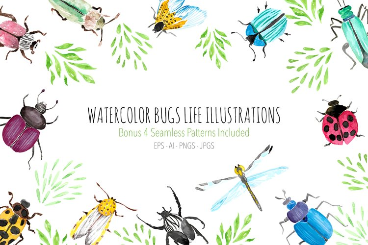 Watercolor Bugs Life Illustrations