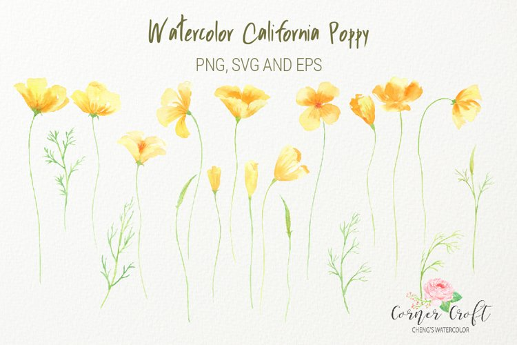 Watercolor California poppy clipart, png, silhouette, vector eps and svg