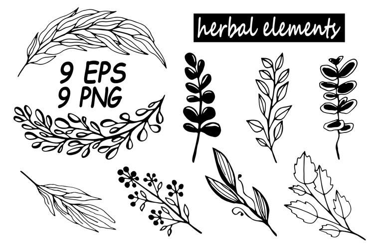 a set of contour twigs and herbs drawn by hand with a liner