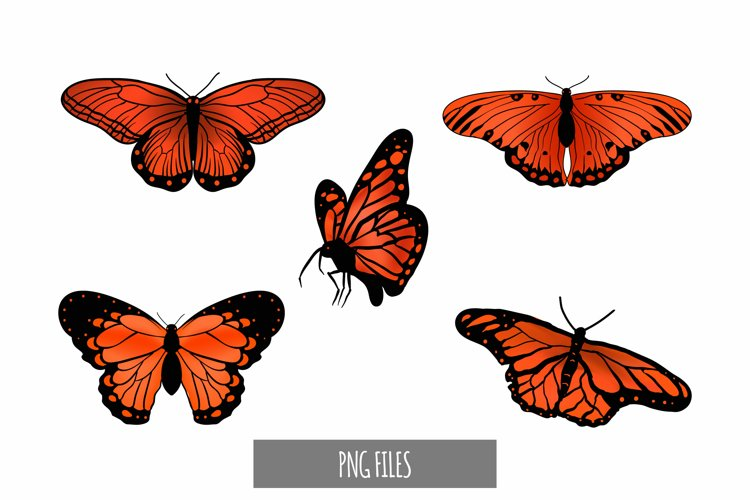 Beautiful Orange Butterfly Clipart example image 1