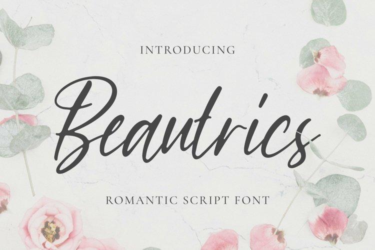 Web Font Beautrics Font example image 1