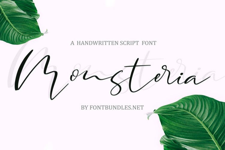Web Font Monsteria Script example image 1