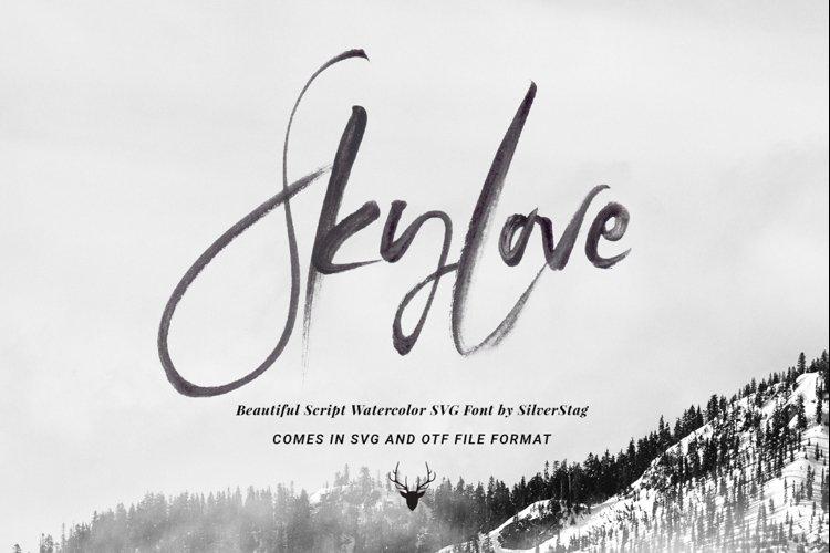 SkyLove SVG Unique Watercolor Script Font example image 1