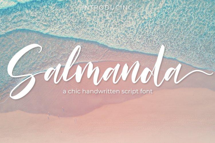 Salmanda - a chic handwritten script font example image 1