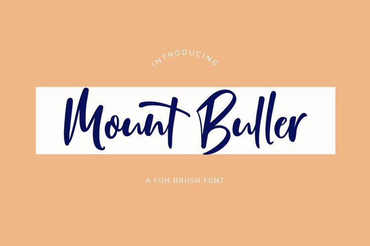 Mount Buller example image 1