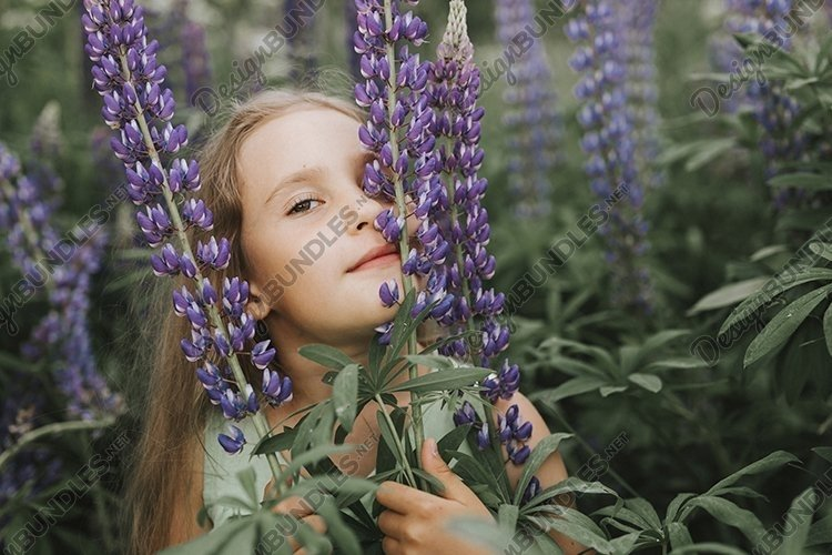 portrait of a little kid girl with bloom flowers lupines