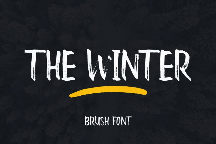 The Winter Brush example image 1