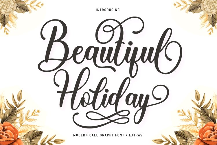 Beautiful Holiday And Extras example image 1
