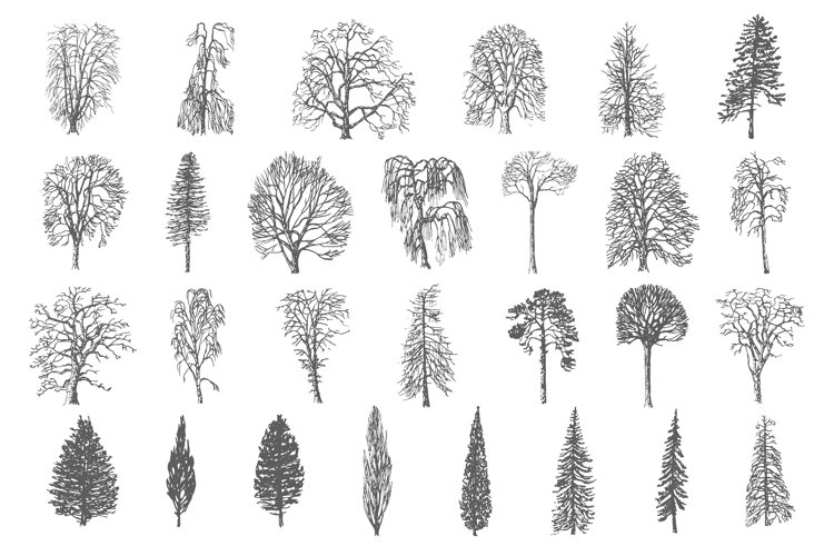 28 Ink trees vector set example image 1