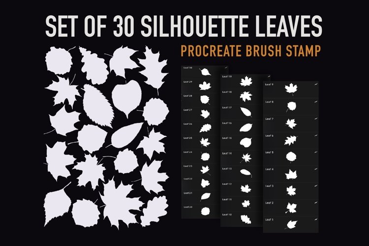 Procreate Brush stamp, Silhouette Leaves Stamps Brushes example image 1