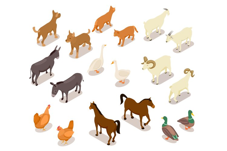 Farm animals isometric. Horse and dog, cat and goose, chicke example image 1