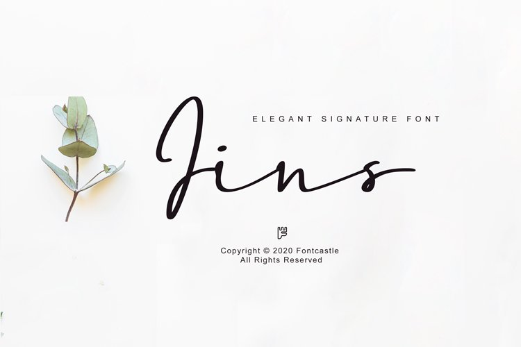 Jins Font example image 1