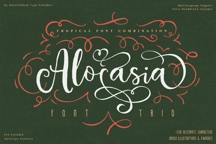 Alocasia-Trio Font Combination example image 1