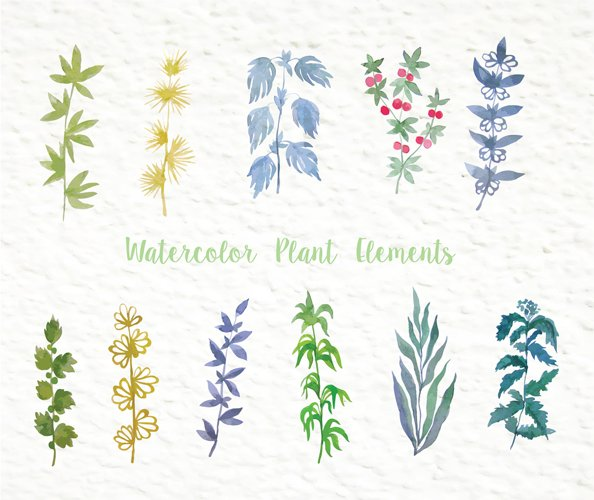 Set of watercolor design elements: rose flowers, plants, butterflies, seamless patterns, splashes.  - Free Design of The Week Design5