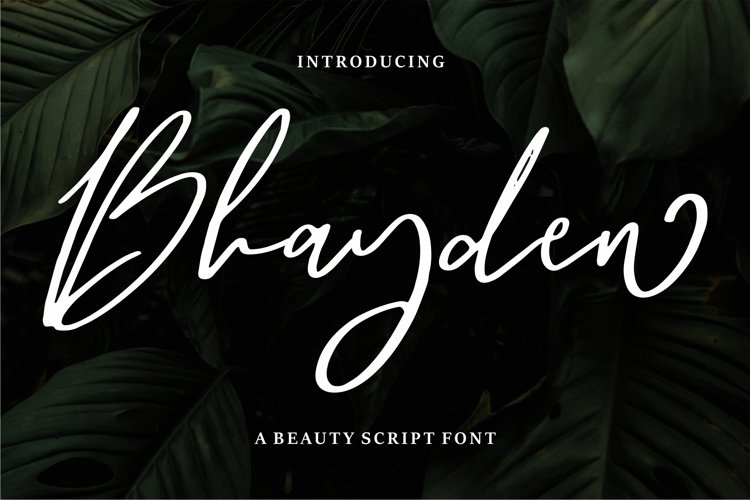 Bhayden - A Beauty Script Font example image 1