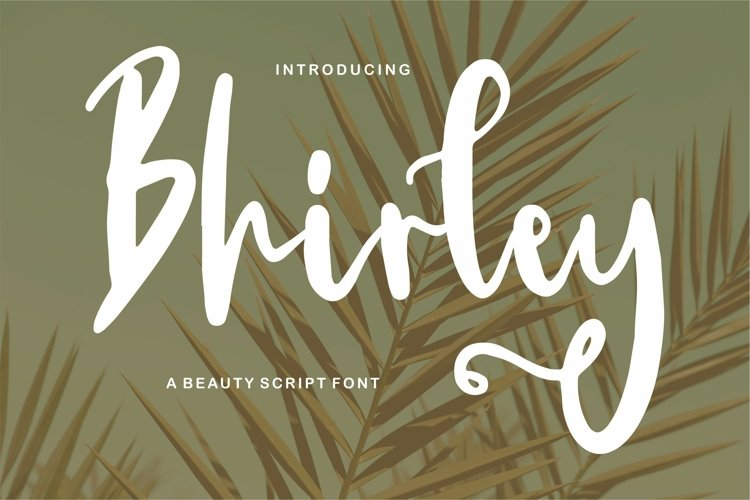 Bhirley - A Beauty Script Font example image 1