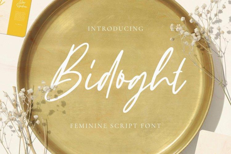 Web Font Bidoght Font