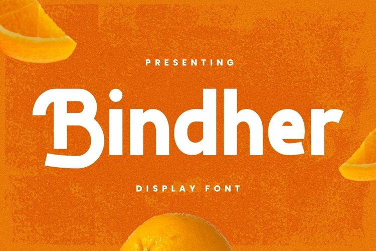 Web Font Bindher Font example image 1
