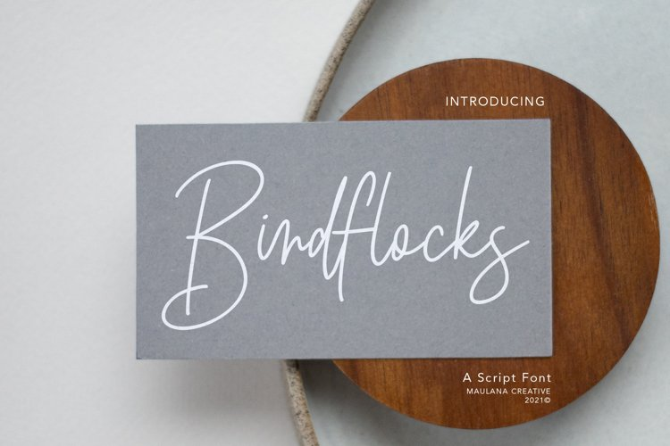 Birdflocks Script Font example image 1