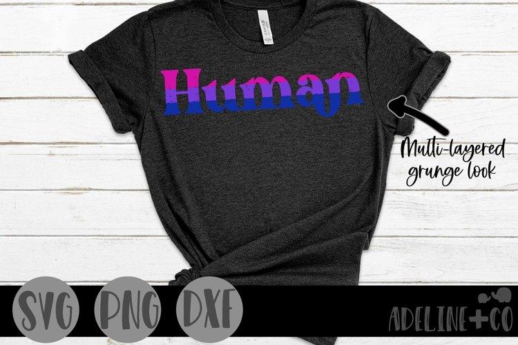 Human | Bisexual, Pride, SVG, PNG, DXF example image 1