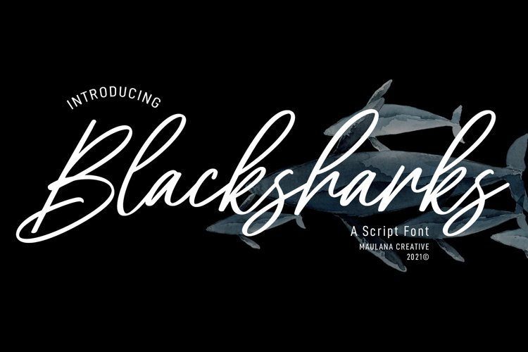 Blacksharks Script Font example image 1